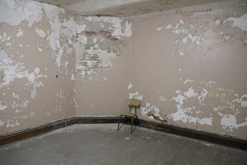 The important reasons to remove all mould from your home properly